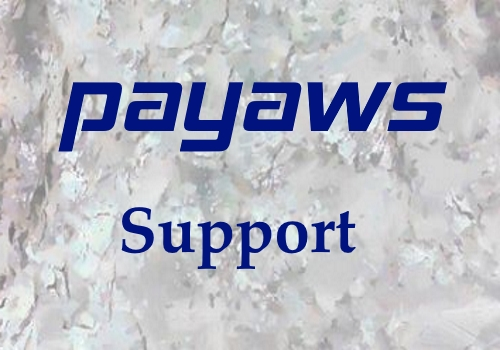 payAWS Support Portal
